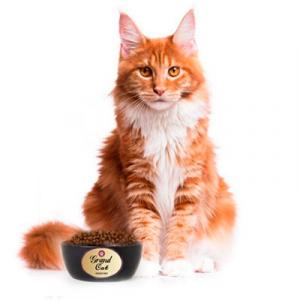 Корм для кошек премиум качества