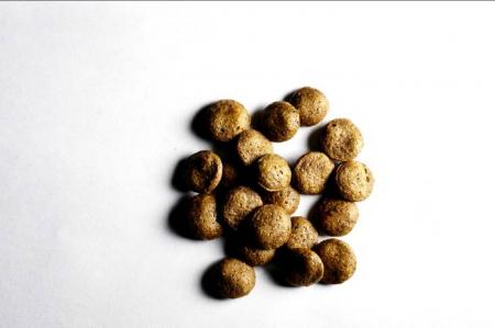 Корм для собак Grand Dog Полнорационный сухой корм для взрослых служебных собак с вольерным содержанием и продолжительными и повышенными нагрузками с пробиотиком Basulifor-A супер премиум класса